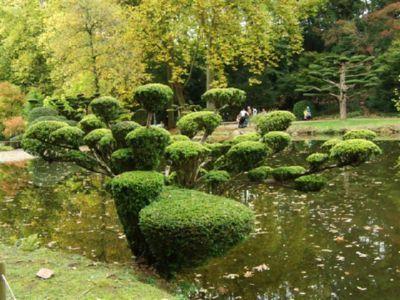 Jardin oriental de maulevrier for Le jardin oriental
